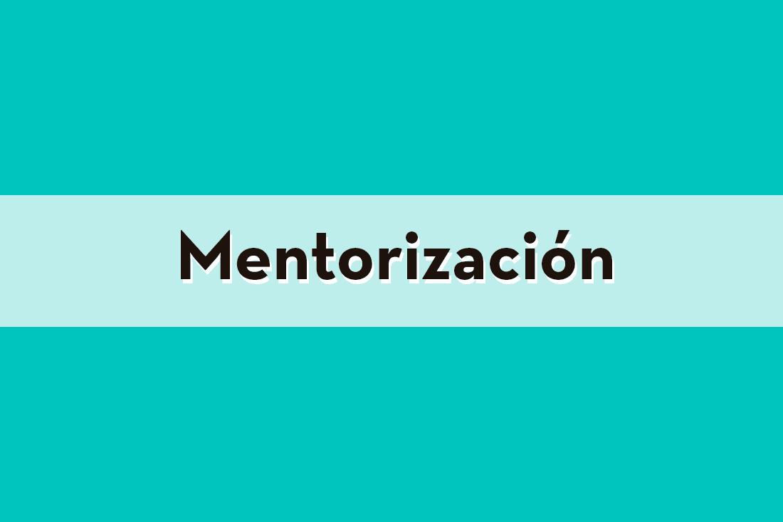 mentoring y orientación para estudiantes con discapacidad